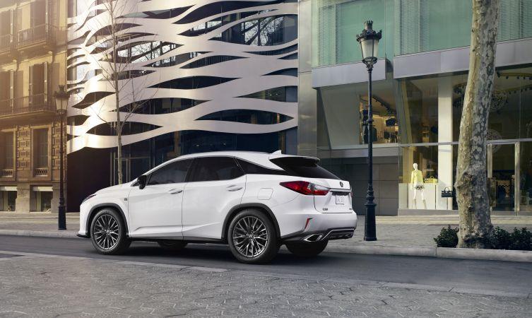 Lexus RX winter garden 04
