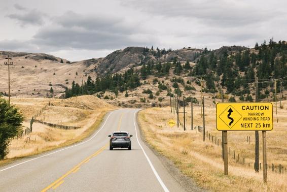 Lexus NX on the highway