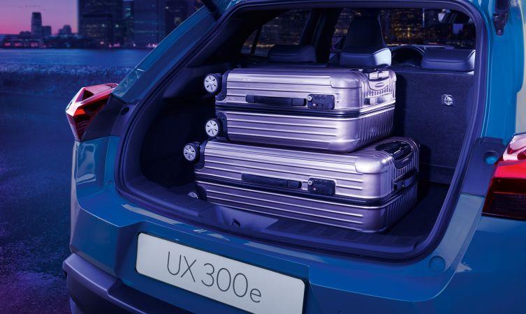 UX 300e