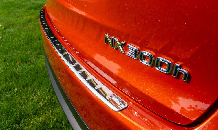 Lexus NX Accessories stainless steel treadplate